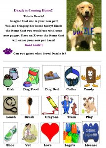 dazzle-is-coming-home-worksheet